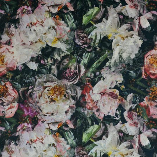 Fleur de Nuit — Noir FDG2930_01